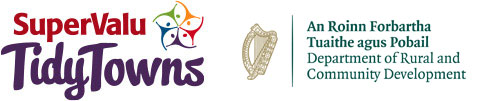 Enniscorthy TidyTown Wins Bronze Medal | Enniscorthy & District Chamber